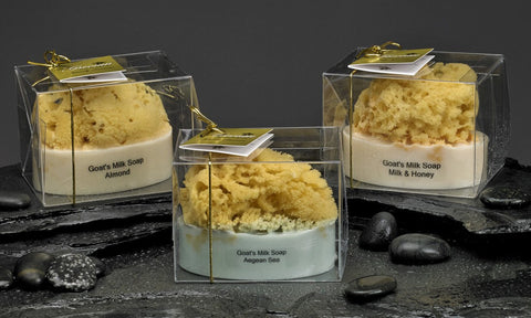 Goat's Milk and Olive Oil Soap with an Embedded Sea Sponge
