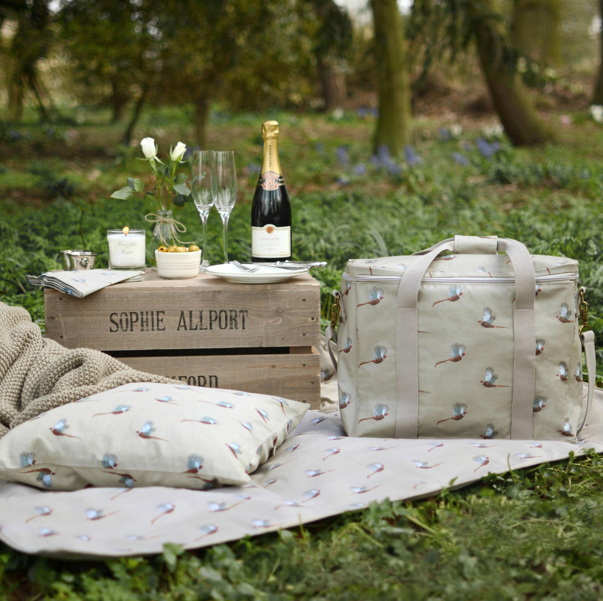 Picnic Blanket by Sophie Allport - Dales Country Interiors