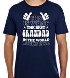 Best Dad In the World Short Sleeve T Shirt