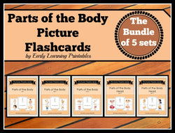 Printable Toddler Flashcards, Parts of the Body, BUNDLE,