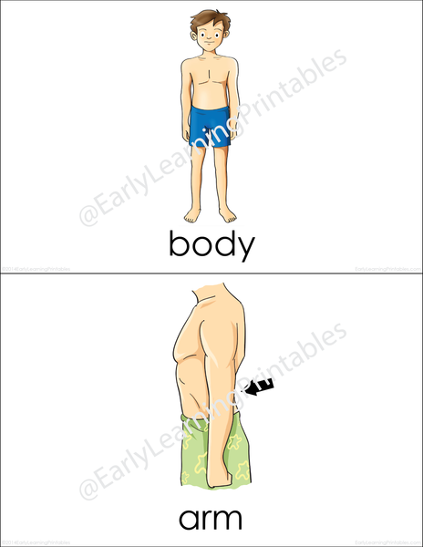 Point to different parts of the body using these beautiful flashcards.