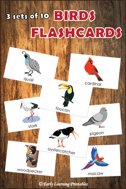 Birds BUNDLE (set I, II, III) Picture Flashcards