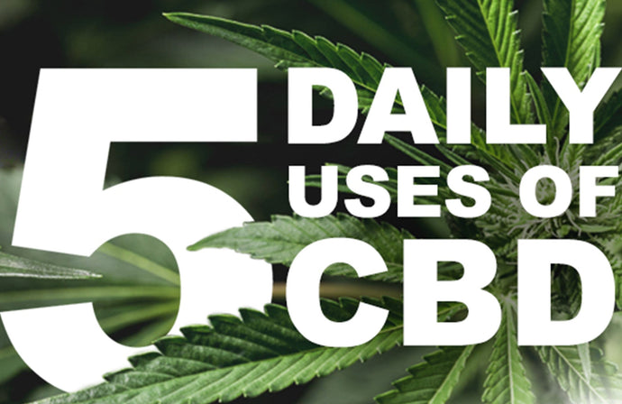 Top 5 Reasons to take Pacific CBD Co Oil Products EVERYDAY