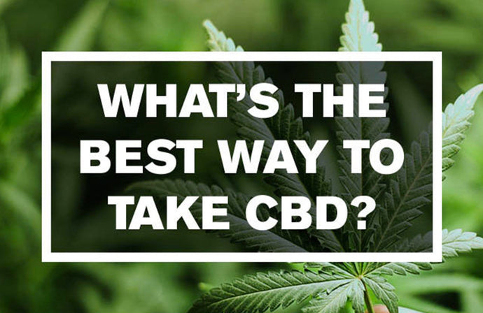 What is the Best Way to take Pacific CBD Co Oil (Tincture)?