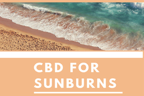 Paradise Valley Products Pacific CBD Co Products for Sunburns