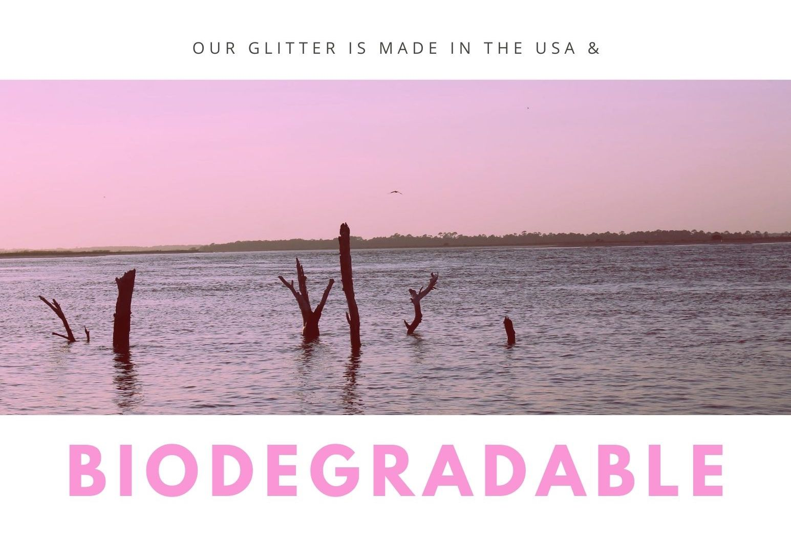 biodegradable glitter made in the usa