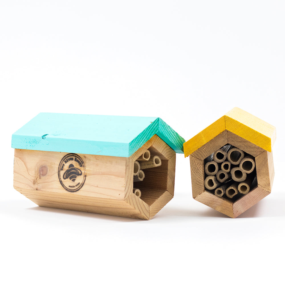 Native Bee Home