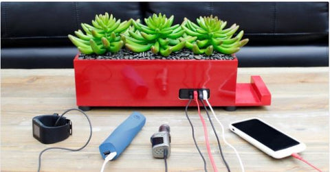 4-Port USB Phone Charger Plant - MinxNY