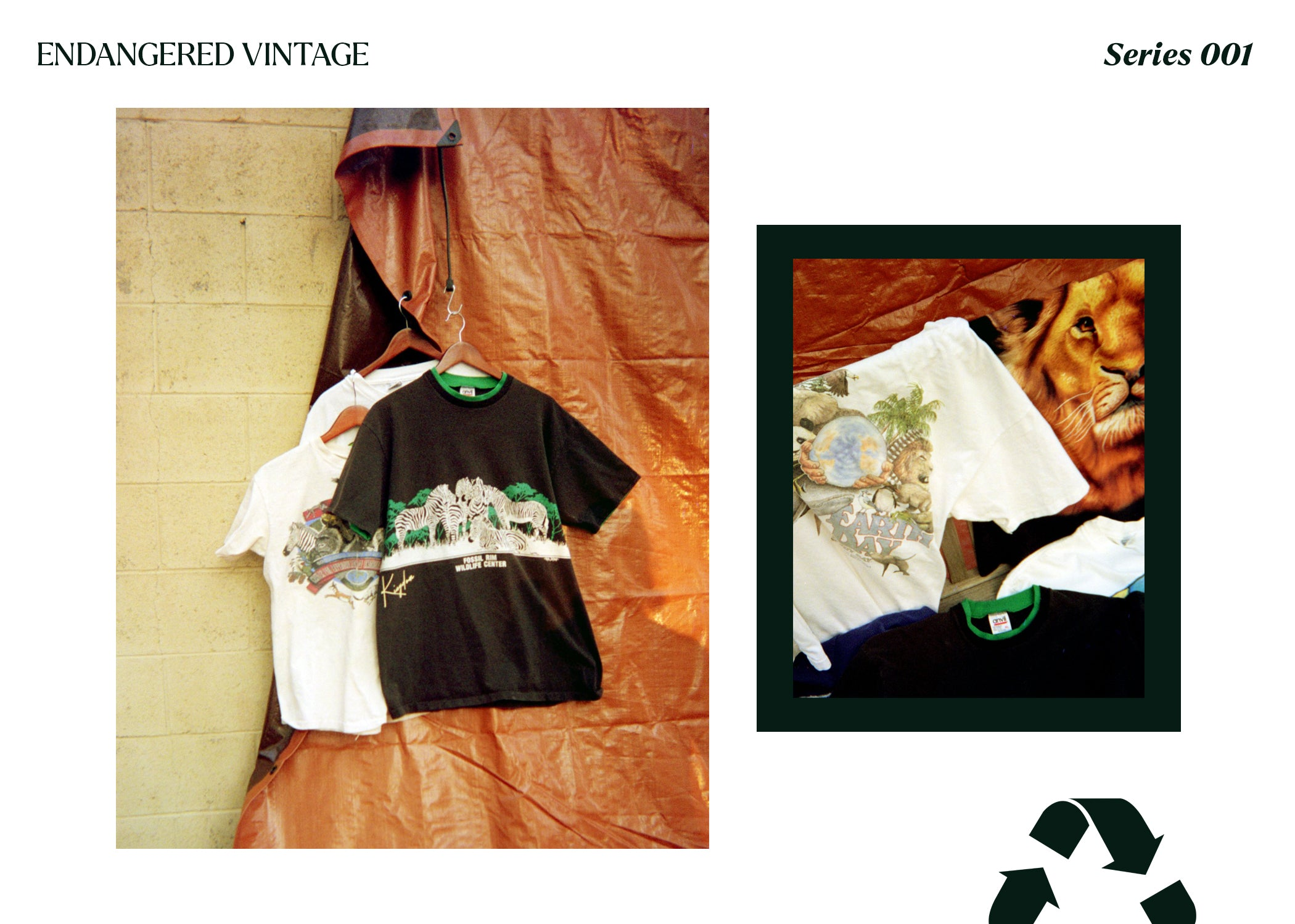 Wildlife Recycled T-Shirts