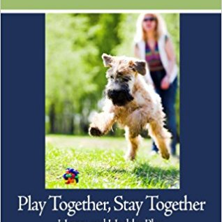 Play Together, Stay Together - Book
