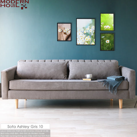 Sofa Ashley Gris 10