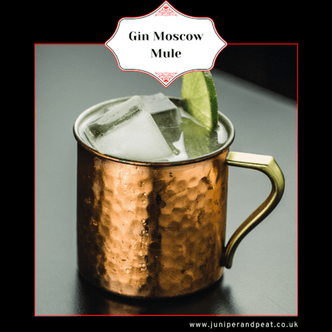 Gin Moscow Mule from the best gin subscription UK