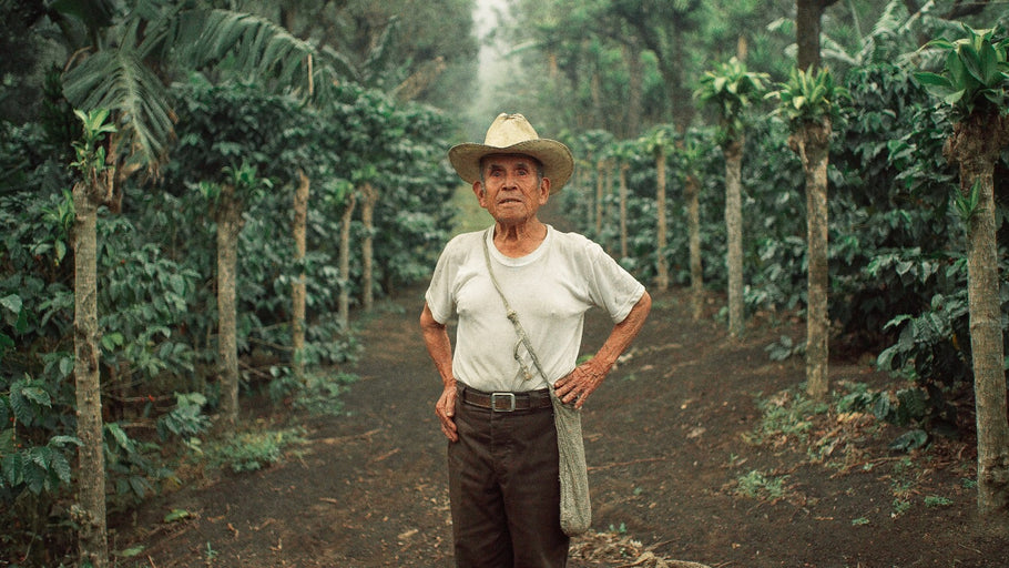 For Don Luis, Coffee Farming Is Life