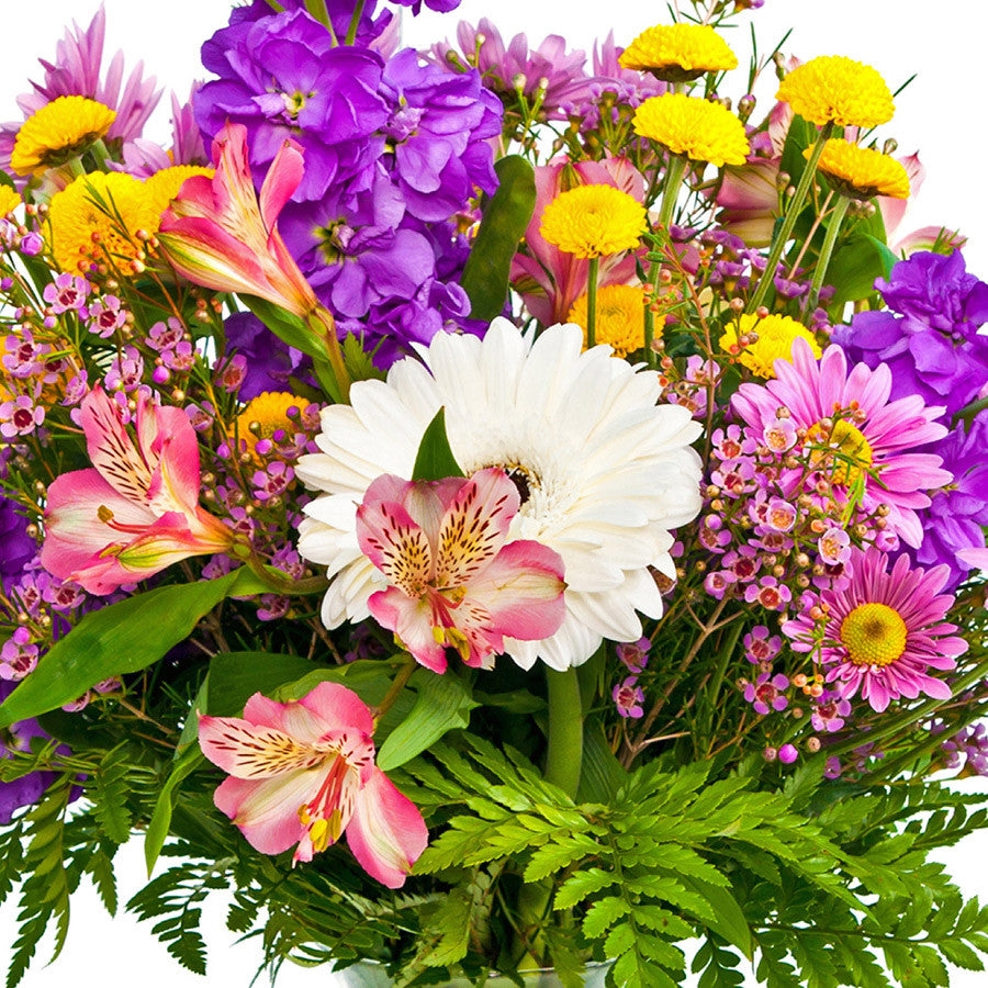 Spring flowers tunies floral expressions spring flowers spring flowers mightylinksfo