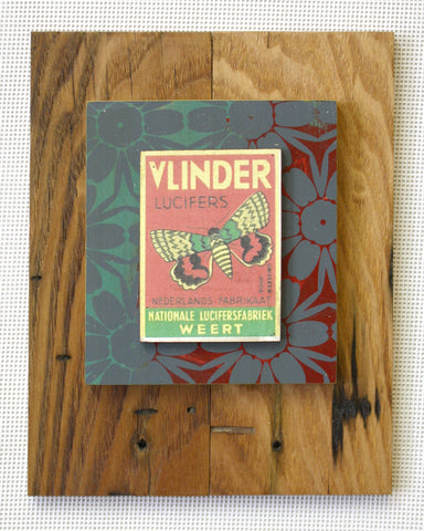 Vlinder on natural wood with worm holes