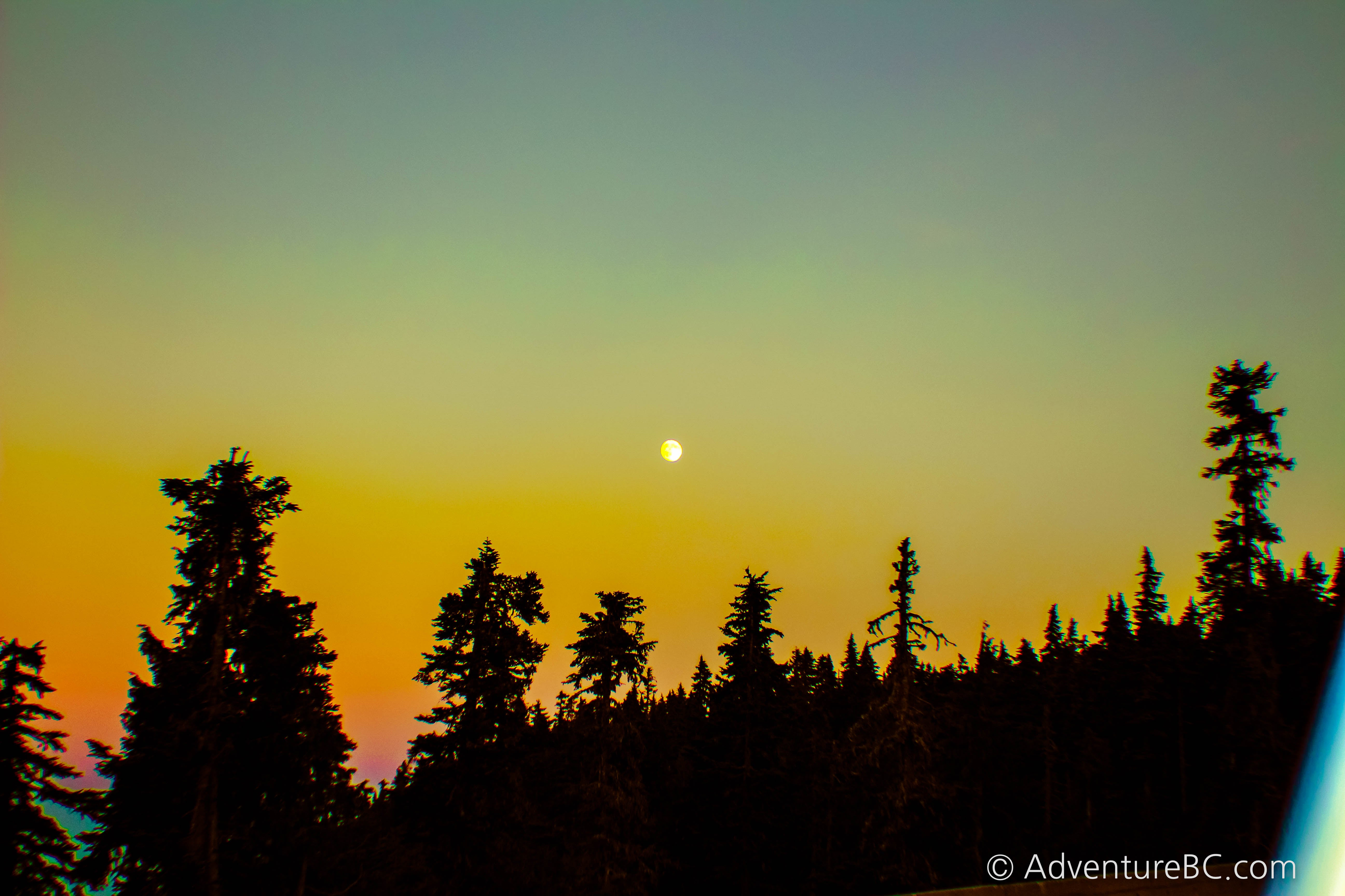 The moon was guiding me in full force up the road to our comfy summer condo on Mount Washington.