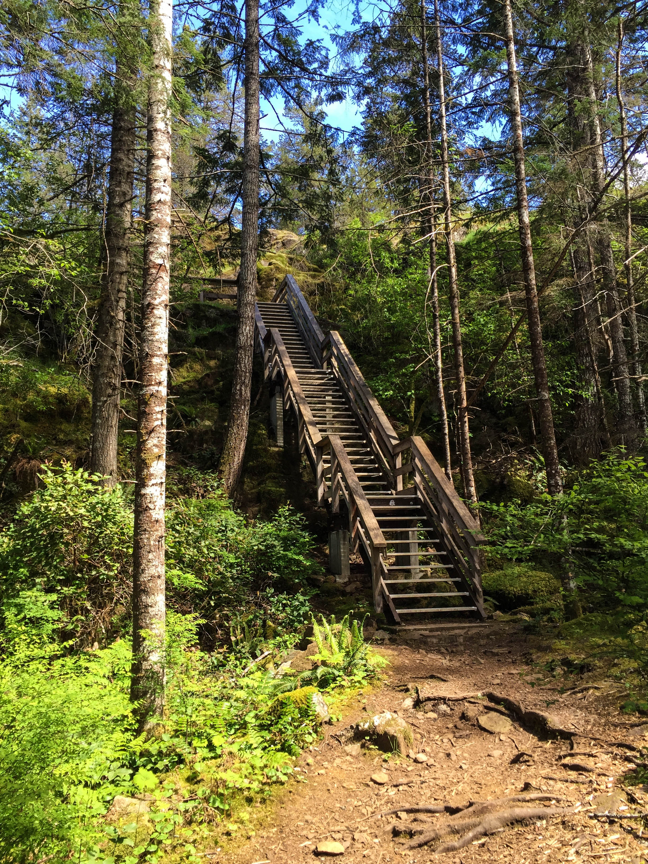 stairs heading up to the top of the the Ripple Rock trail view.