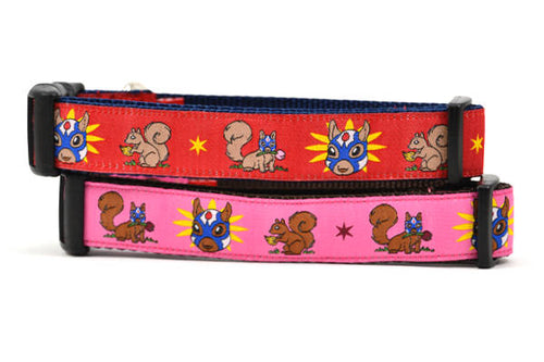 Two dog collars - one red and one pink - design includes squirrel in lucha libre mask with a yellow flower behind it and a tulip on the mask.  One small squirrel with a tulip in its mouth and one with a tulip bulb.  Also, a six pointed star.