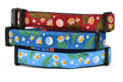 Stack of three dog collars - one light blue, one dark teal, and one burgundy.  Each collar as the same design which depicts chamomile flowers, stars, and a half moon.