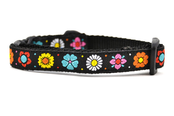 One black cat collars with daisy chain pattern and colorful daisy flowers.