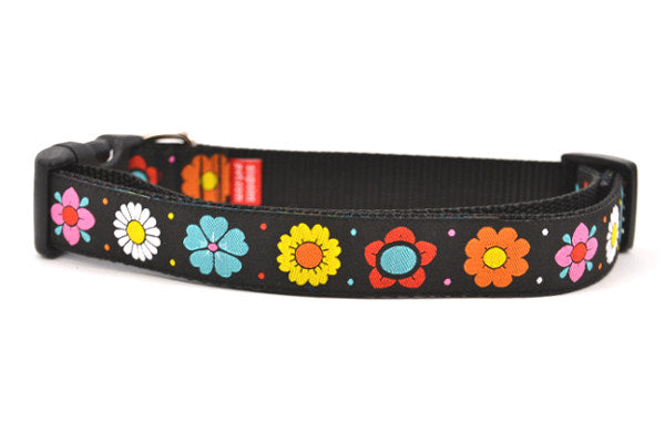 Large black dog collar with daisy chain pattern and colorful daisy flowers.