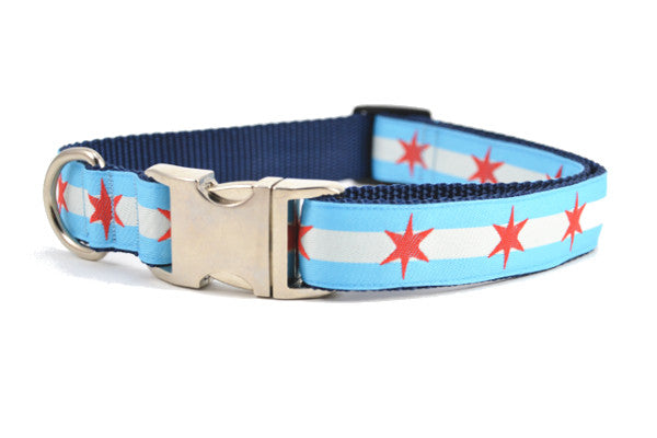 Large dog collar with metal clasp - dog collar has two light blue stripes and one white stripe and red six pointed stars - representing the Chicago Flag.