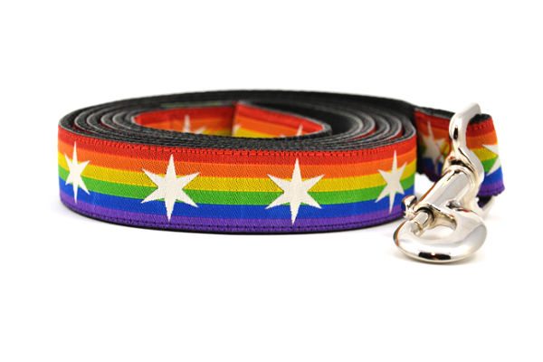 Large dog leash with Rainbow Flag Stripes and white six pointed stars around the collar.