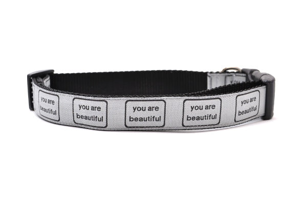 Large dog collar that is silver with the words you are beautiful in black.