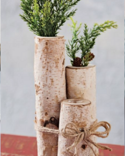 Bark and Birch Test Tube Vase