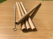 Bamboo Straws - Smoothies (25 cm) - Pack of 3 with cleaning brush (Wholesale available)