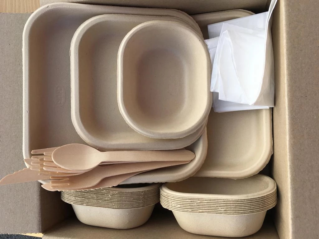 PARTY PACK FOR 25 - Compostable Bagasse (Sugarcane Pulp) Plates