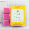 Fresh Daisy Wax Melts