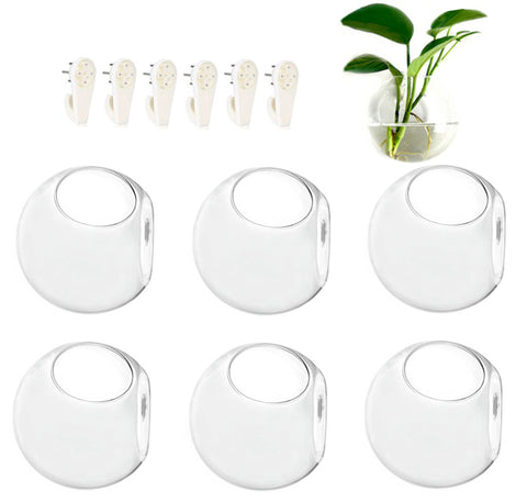6 Pack Wall Hanging Planters Glass Terrariums Round Wall Planter