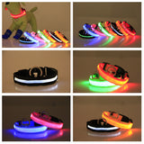 FREE LED Safety Dog Collar with Flashing Light *** JUST PAY SHIPPING *** - Delivered Value