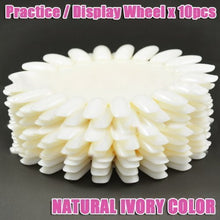 Display / Practice Wheel (Natural Ivory,Circle) x 10 CODE: #58