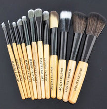 New 12pcs Professional Cosmetics Makeup Brush Set / Kit Eyeshadow , Eyeliner , Foundation , Angle Powder Brushes Goat Hair With Bag (Tomato Design)