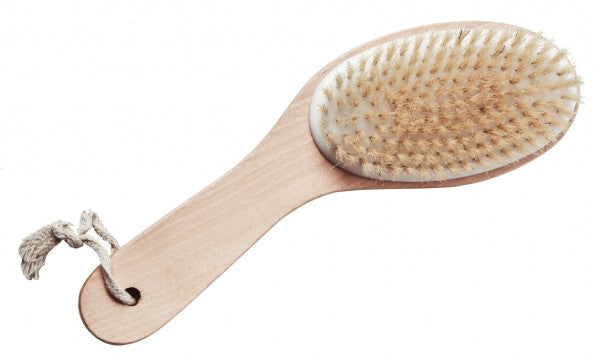 Body Brush with Handle