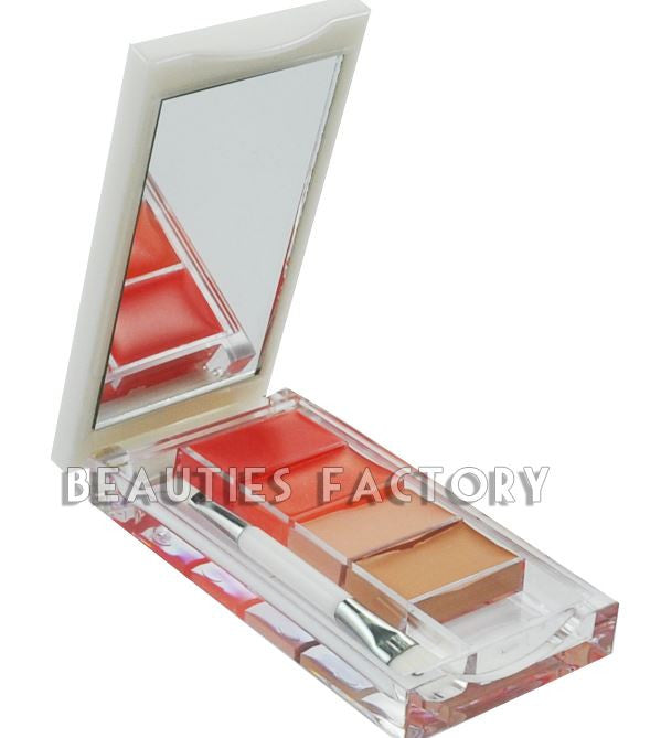 Quick Kit - 2 color Concealer + 2 color Lipgloss (Color 10)