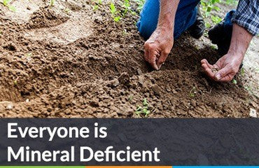 Everyone is Mineral Deficient