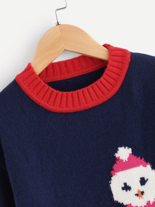 Toddler Boys Drop Shoulder Winter Print Jumper