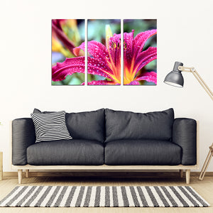 Lilly 3 Piece Framed Canvas