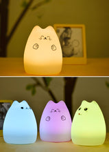 Cute Cat LED Light with rechargeable battery