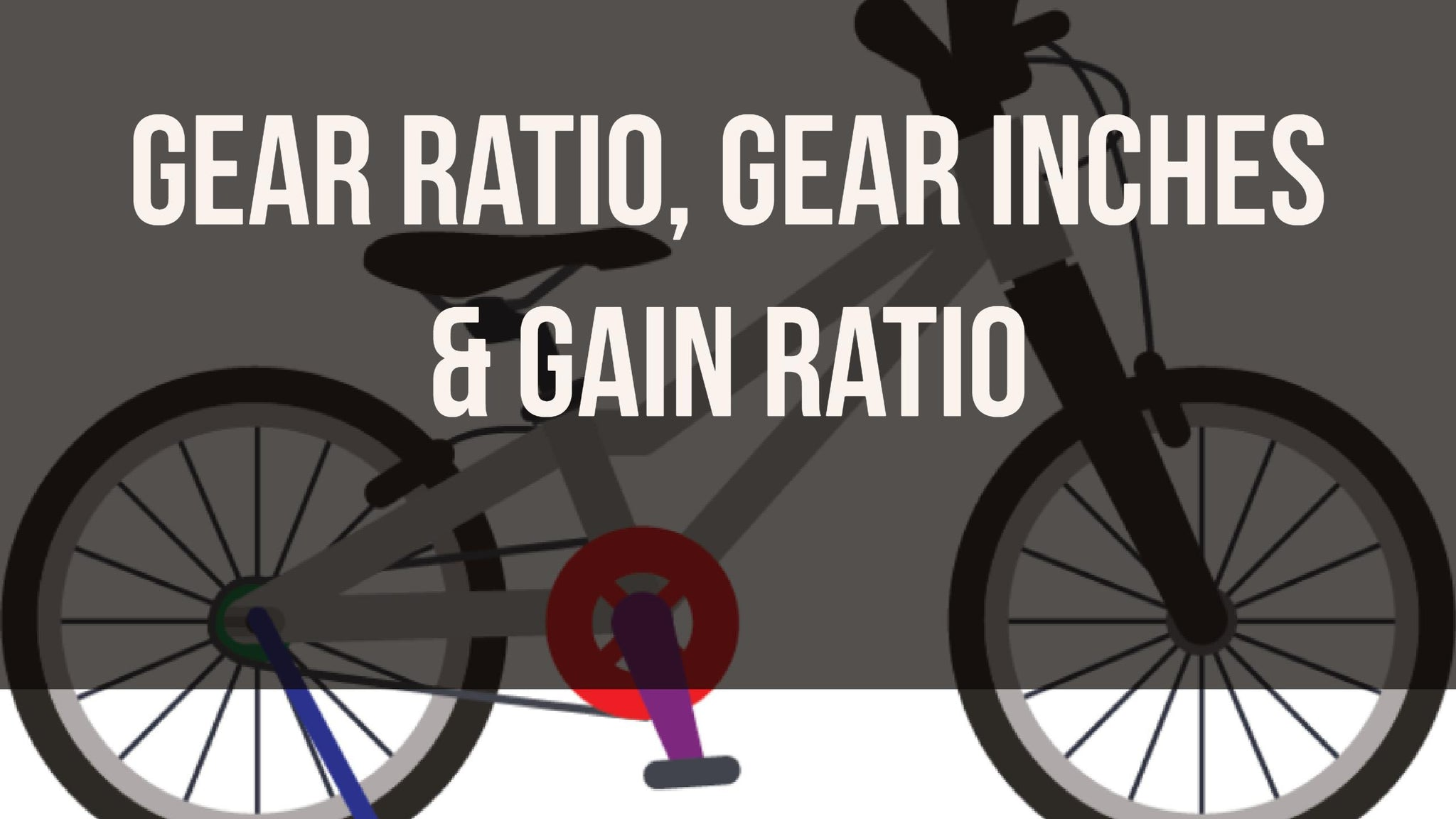 What is the gear ratio