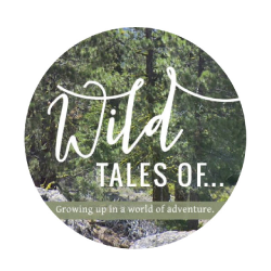 "Review:  Wildtalesof - ""We're big fans of Prevelo's Alpha Three"""