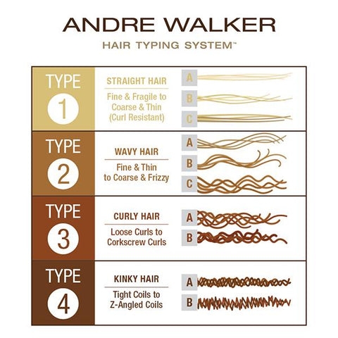 Andre Walker Hair classification infographic.