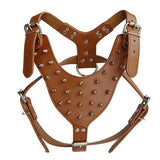 Spiked Studded Leather Dog Harness