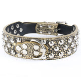 Studded Dog Collar