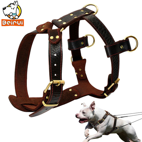 Genuine Leather Dog Harness