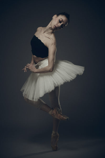 Ballerina by David Perkins