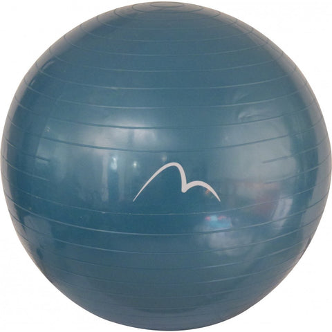 More Mile Fitness Gym Ball With Pump 65cm